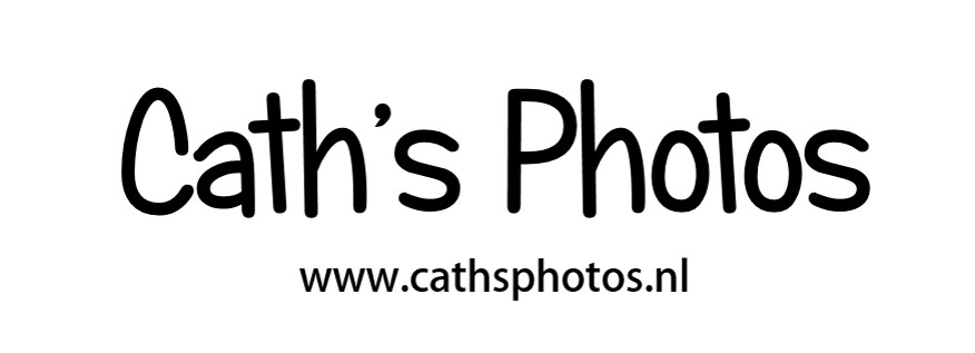 cathsphotos